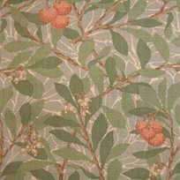 William Morris Arbutus